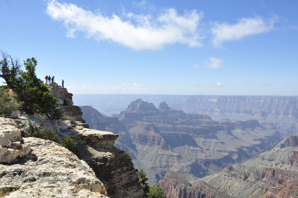 Participants explore Grand Canyon National Park, Arizona, August 20, 2014. Photo courtesy of Valentin Filimon.
