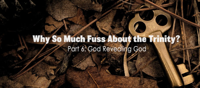 Why So Much Fuss About the Trinity? Part 6: God Revealing God